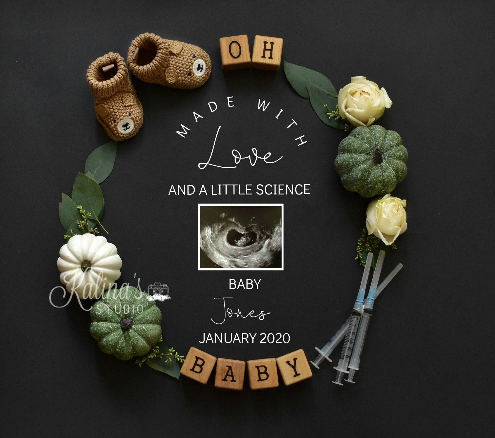 fall-ivf PREGNANCY announcement