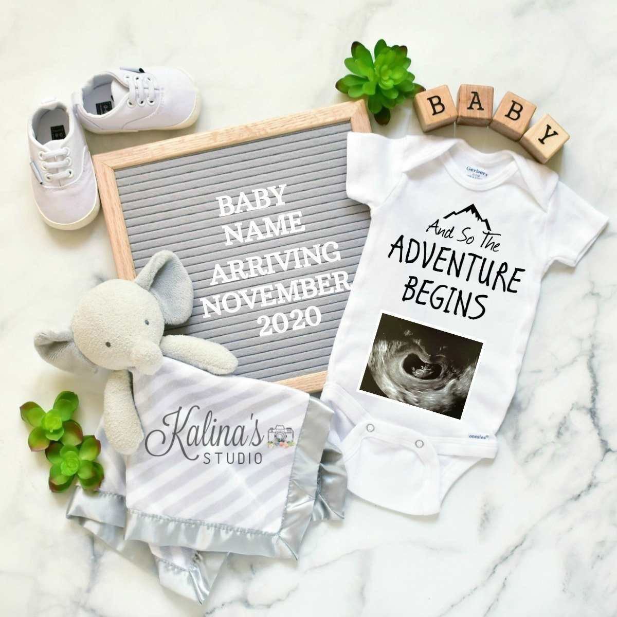 grey-elephant-pregnancyannouncement