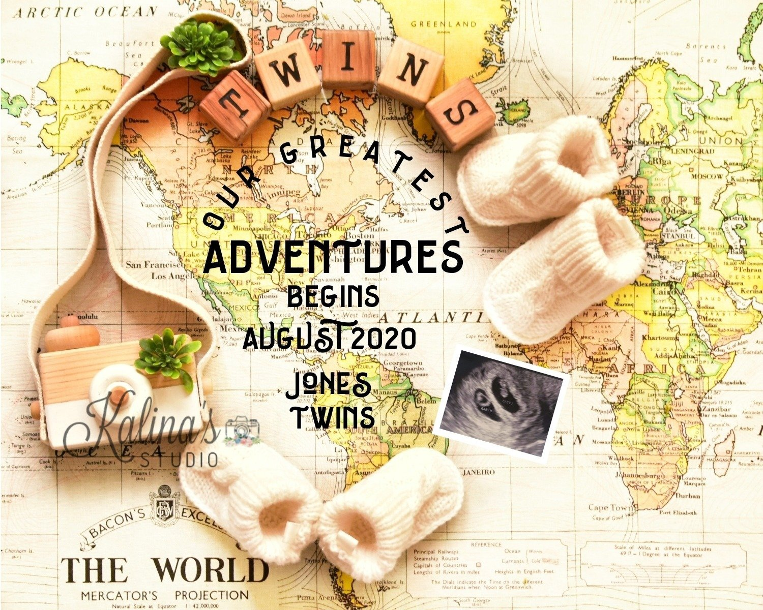 twins-adventure-pregnancy-announcementsocialmedia